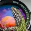 Sony Zeiss FE 35/2.8 - letzter Beitrag von fourthird